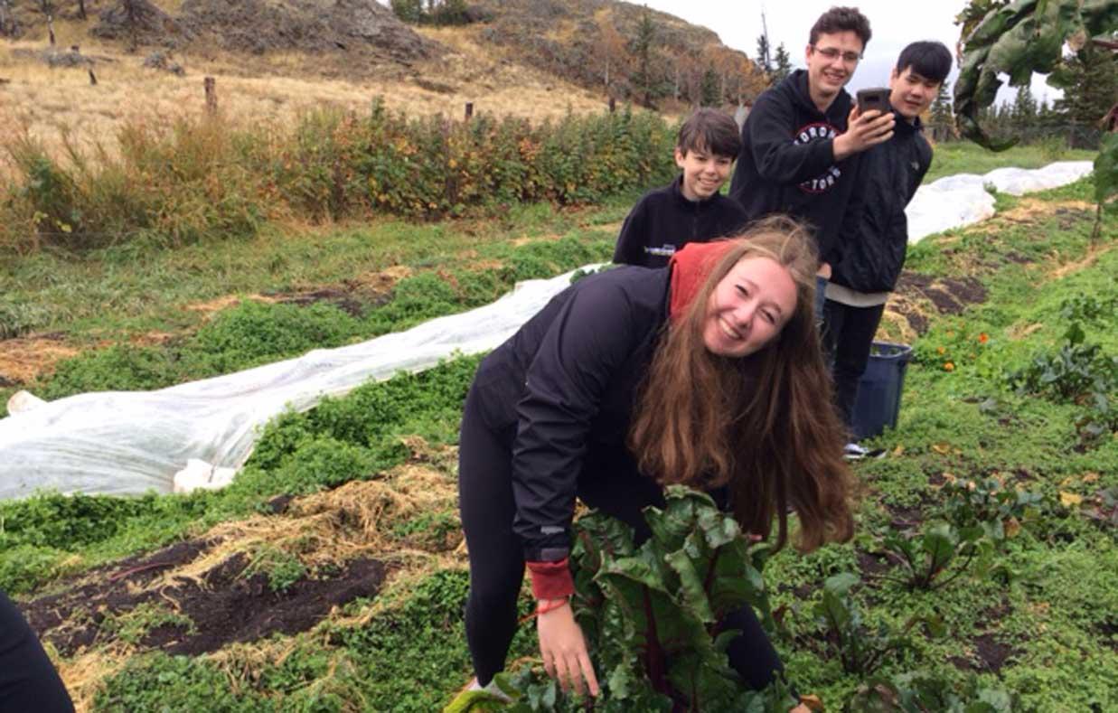 Student-harvesting-beet