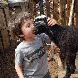 Child-and-kid-goat